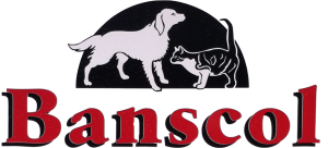 banscol-kennels-and-cattery-sutherland